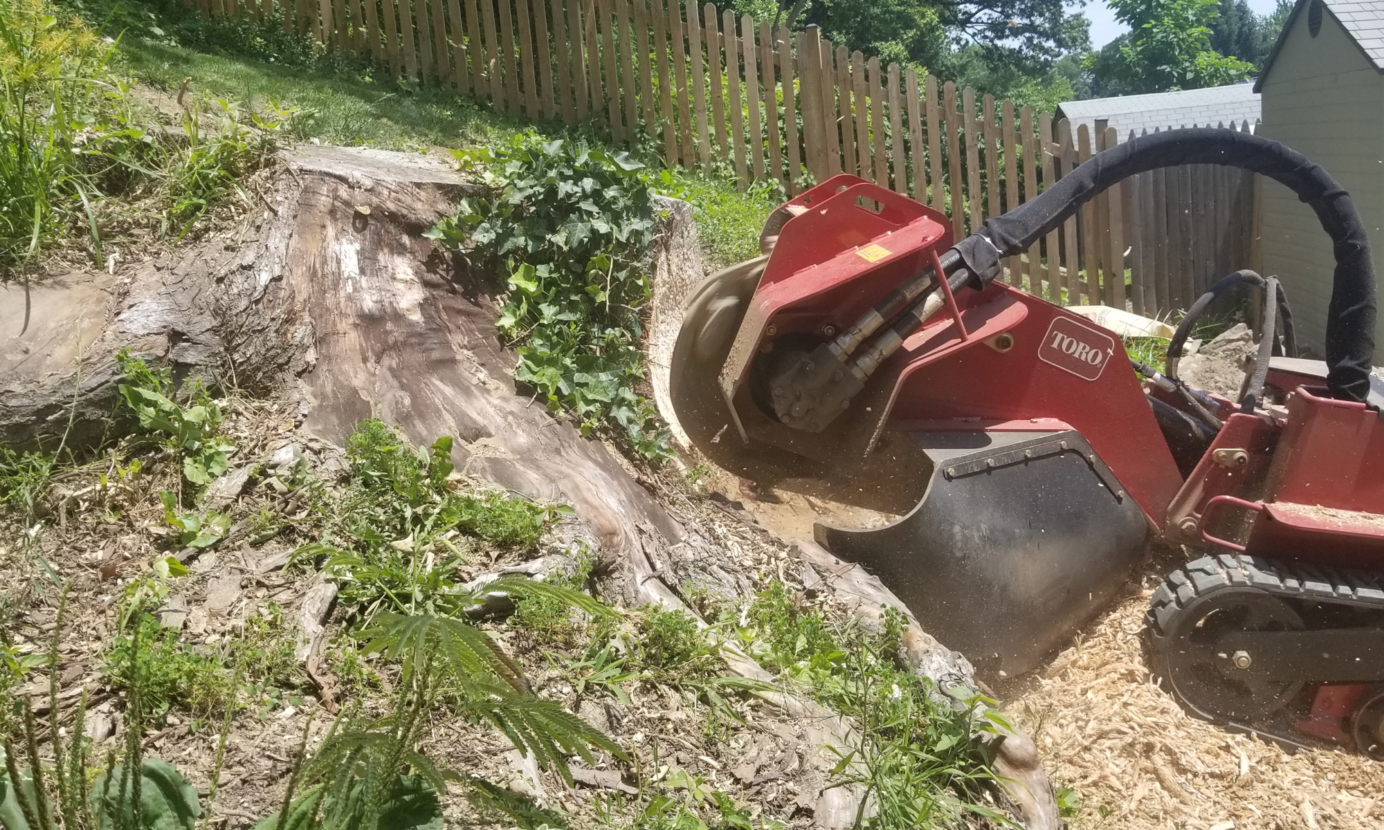 The Naughty Stump Remover